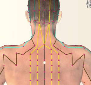 Acupuncture for neck and shoulder pain